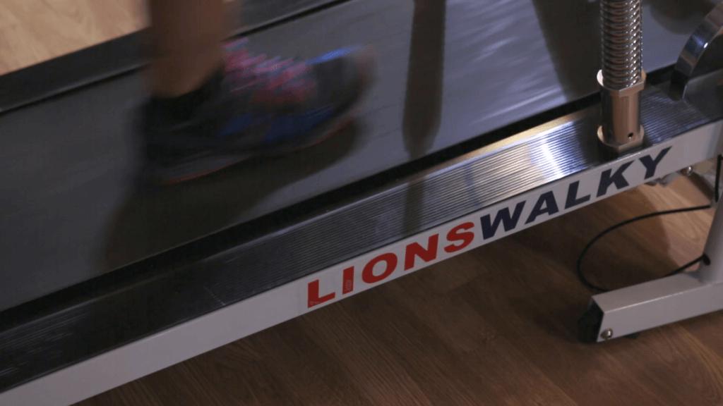 lionswalky SPOT SOCIAL